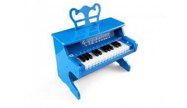 Instrumente muzicale hobby